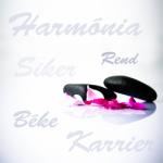 Rend és harmónia a lelke a sikeres álláskeresésnek