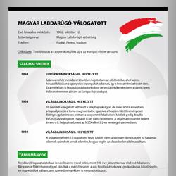 Ilyen lenne a Magyar Labdarúgó-Válogatott önéletrajza