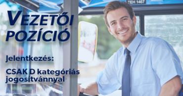 Vezetői állások – D kategóriás jogosítvánnyal